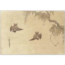 Katsushika Hokusai: Birds and Wisteria - Artelino