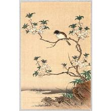 Unknown: Bird and Flowering Tree - Artelino