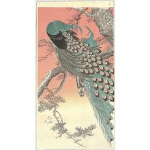 Ohara Koson: Peafowls - Artelino