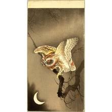 Ohara Koson: Owl and Crescent Moon - Artelino