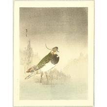 Watanabe Seitei: Waterfowl - Artelino