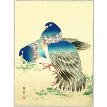 幸野楳嶺: Blue Pigeons - Artelino