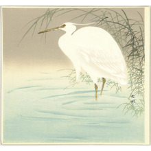 Ohara Koson: Wading Egret - Artelino