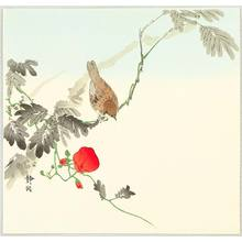 静湖: Sparrow and Red Flower - Artelino