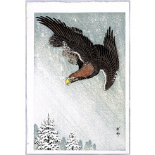 Ohara Koson: Eagle in Flight against a Snowy Sky - Artelino