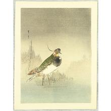 Watanabe Seitei: Green Waterfowl - Artelino