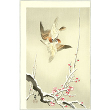 Ohara Koson: Sparrows above Plum Tree - Artelino