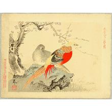 Imao Keinen: Chinese Pheasants - Keinen Kacho Gakan - Artelino