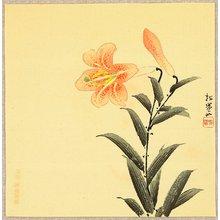 Uemura Shoen: Mountain Lily - Artelino