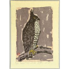 Unknown: Long-crested Eagle - Artelino