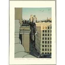Brown Matt: Seagulls over 7th Avenue - Artelino