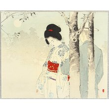 Mizuno Toshikata: Lovers in the Mist - Artelino