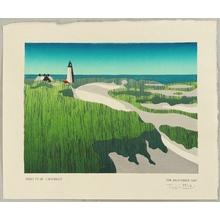 Tom Kristensen: Great Point Lighthouse - Artelino