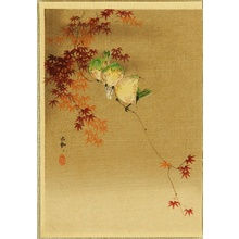 Ohara Koson: Red Maple and Three Birds - Artelino
