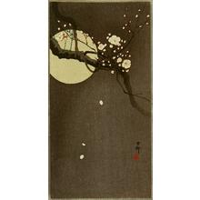 小原古邨: Flowering Plum and Moon - Artelino