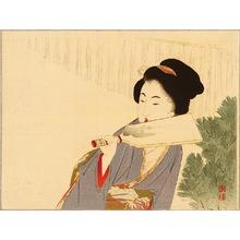 Takeuchi Keishu: Hagoita - Artelino