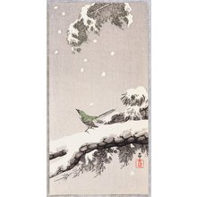 小原古邨: Bush Warbler in Winter - Artelino