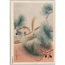 Ono Bakufu: Squirrel on a Pine Tree - Artelino