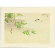 Watanabe Seitei: Butterflies and Water Plants - Artelino