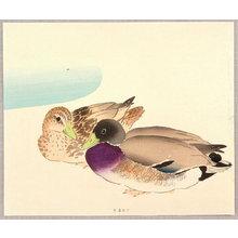 Ota Saburo to Attributed: Mallard Ducks - Artelino