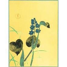 神坂雪佳: Blue Flower - Artelino