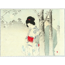 Mizuno Toshikata: Lovers in the Mist - Artelino