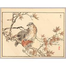 Kono Bairei: Hawk - Artelino