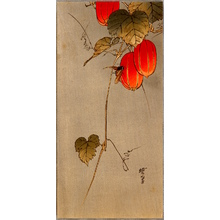 Kawanabe Gyosui: Bee and Red Fruit - Artelino