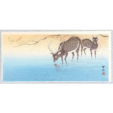 小原古邨: Deer in Shallow Water - Artelino