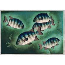 Ono Bakufu: Striped Fish - Artelino