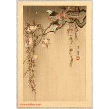 Watanabe Seitei: Two Birds and Cherry Tree - Artelino