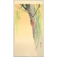 Ohara Koson: Cicada on a willow tree - Artelino