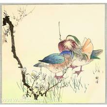 月岡耕漁: Mandarin Ducks - Artelino