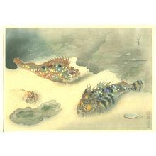 Ono Bakufu: Scorpion Fish - Pictures of Fish in Japan Vol.3 - Artelino