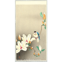 Ohara Koson: Blue Bird and Magnolia - Artelino