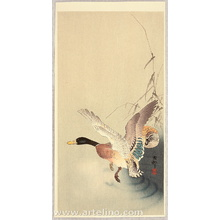 Ohara Koson: Flying Away - Artelino