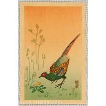 小原古邨: Pheasant - Artelino