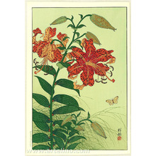 小原古邨: Tiger Lilies and Butterfly - Artelino