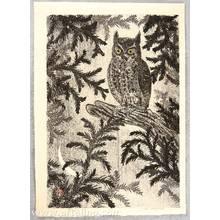 Aoyama Masaharu: Owl with Golden Eyes - Artelino