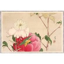 Watanabe Seitei: Birds and Flowers by Seitei - Peony - Artelino