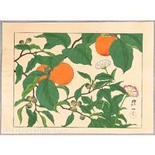 酒井抱一: Persimmons and Flowers - Artelino