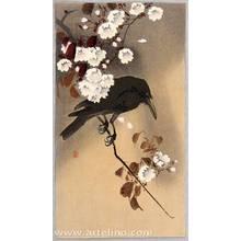 小原古邨: Crow and Cherry Blossoms - Artelino