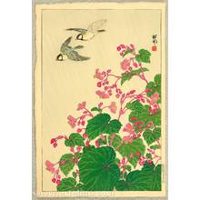 Ohara Koson: Two Birds and Begonia in Rain - Artelino