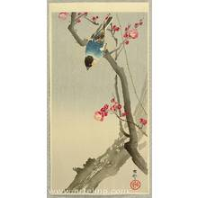 小原古邨: Bullfinch on Plum Tree - Artelino