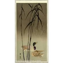 Yamamoto Shoun: Mallard Ducks and Reeds - Artelino