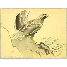 梶田半古: Eagle - Artelino