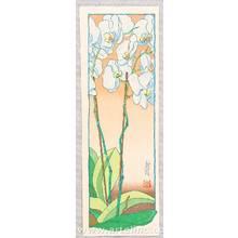 Paul Binnie: Orchids Morning - Asa no ran - Artelino