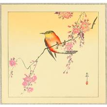 小原古邨: Red Bird and Cherry Blossoms - Artelino