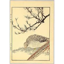Imao Keinen: Chinese Pheasants - Keinen Gafu - Artelino