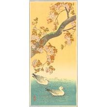 Ito Sozan: Two Ducks and Cherry Tree - Artelino